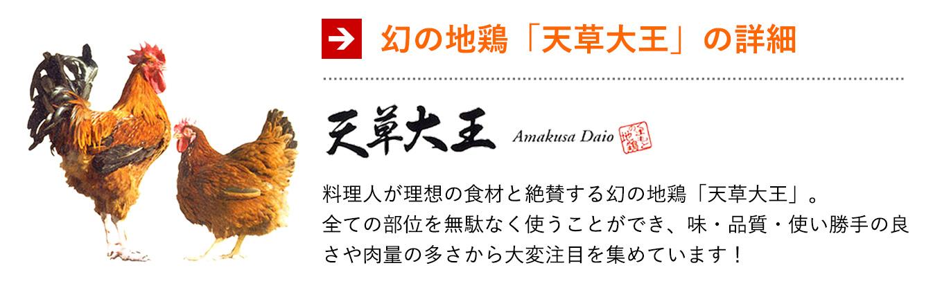幻の地鶏「天草大王」の詳細