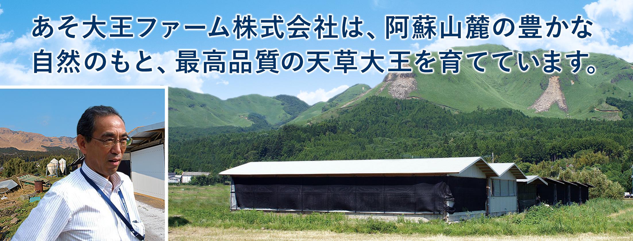あそ大王ファーム株式会社は、阿蘇山麓の豊かな自然のもと最高品質の天草大王を育てています。